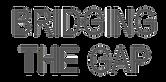logo gap long.png