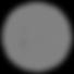 Euro Icon Grey