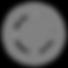 Life Preserver Icon Grey