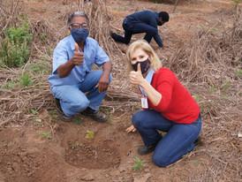 Usina Jacarezinho se une à Polícia Ambiental, Prefeitura e IAT para realizar plantio de mudas.