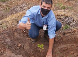 Usina Jacarezinho se une à Polícia Ambiental, Prefeitura Municipal e IAT para realizar plantio de mu