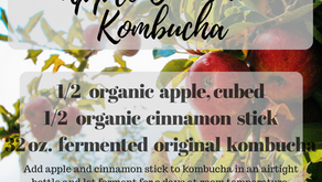 Apple Cinnamon Kombucha