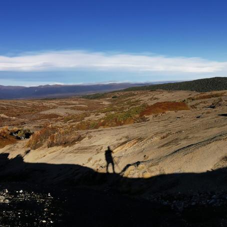 8 vraies bonnes raisons de marcher le Te Araroa trail du sud au nord (NOBO)
