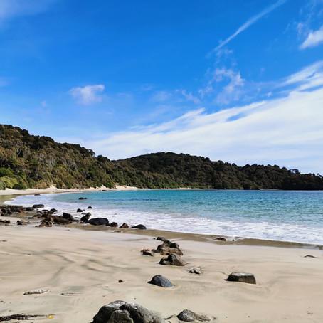 Te Araroa trail : FAQ