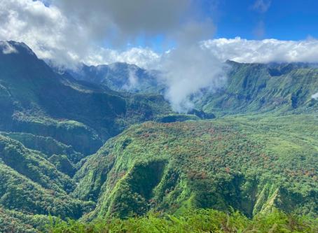 Tahiti : Le voyage d'une vie !