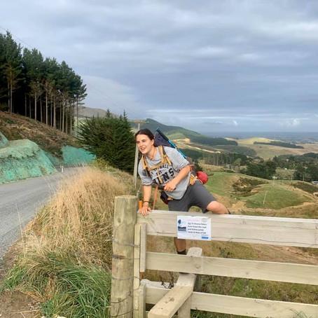 Te Araroa trail - carnet de voyage 6 -  île du nord - WELLINGTON