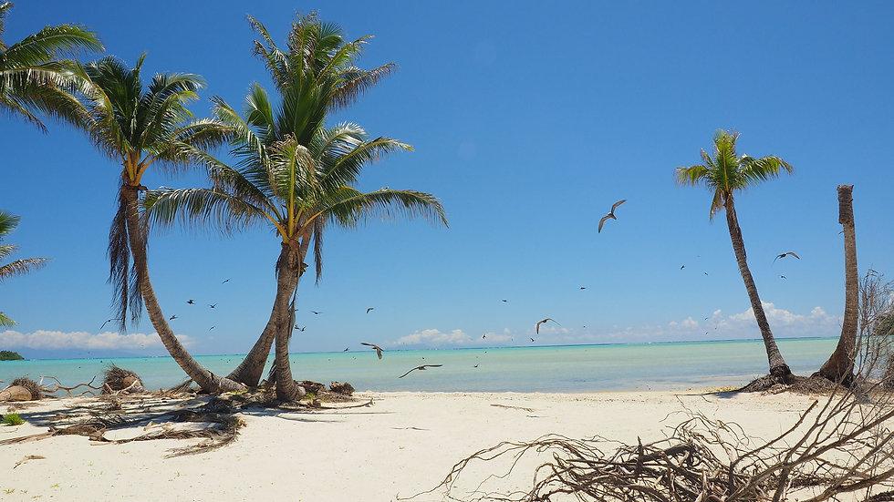tetiaroa-polynesie-francaise.jpg