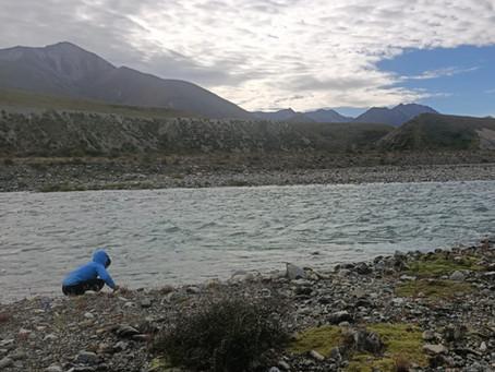 Comment gérer la nourriture et l'eau sur le Te Araroa trail ?