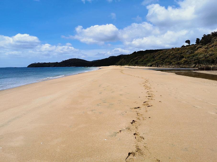 plage-ocean-marche-christmas-village-stewart-island-nz