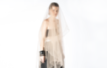 WIX-BACKGROUND-tulle.png