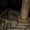 Thumbnail: Money Powder