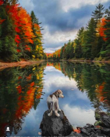 AliLia_Autumn_2020