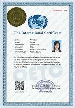 証書:TAC国际课程认证_見本.jpg