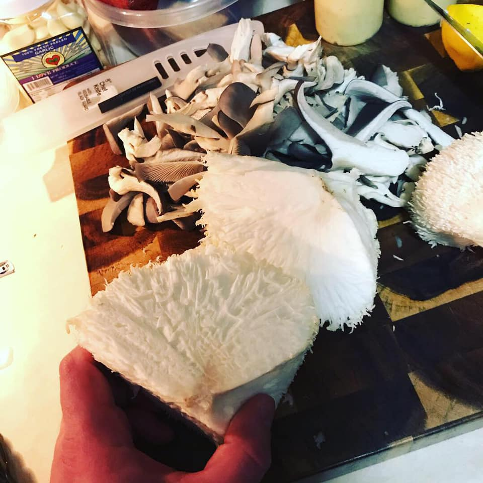 cut up lions mane and blue oysters