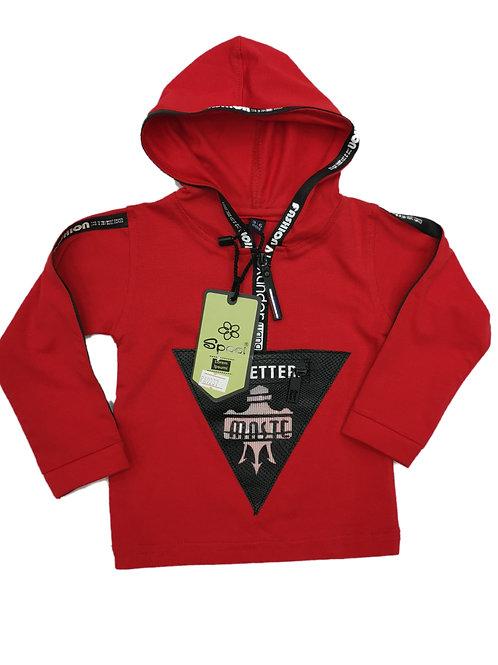 Boys hooded tshirt