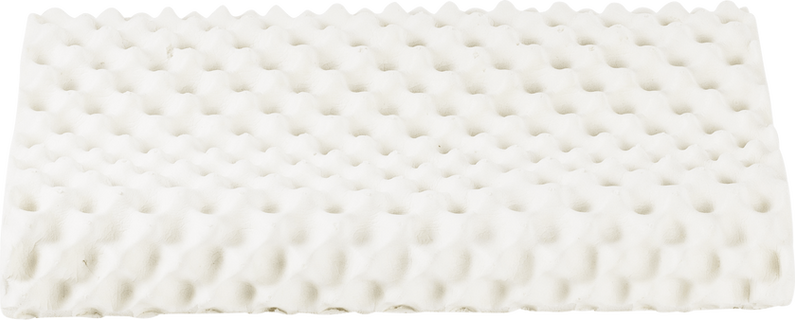 pillow_graphic_0004_photo-knobby3-Latexmonster.png