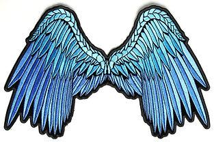 blue wings.jpg