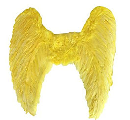 yellow wings.jpg