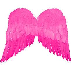 pink wings.jpg