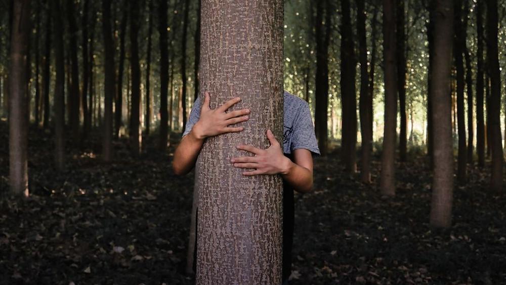 man-hugging-tree
