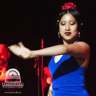 Karla Flamenco avanzado.jpg