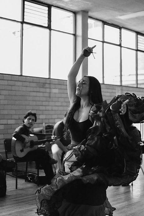 Danza, Flamenco, Guitarra, Castañuelas, Lina, Ravines
