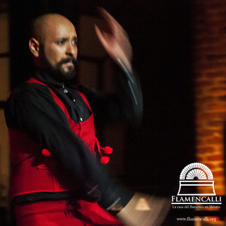Ardian Flamenco Intermedio.jpg