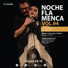 Noche_flamenca-vol-94