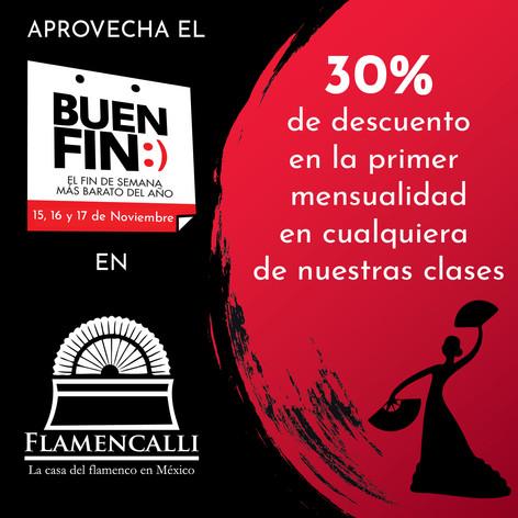bUEN FIN22.jpg