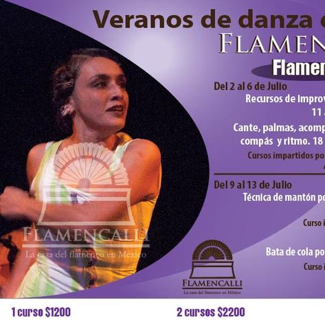 FLAMeNCO VERANO 2018