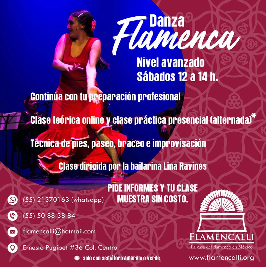 Clases de flamenco nivel avanzado