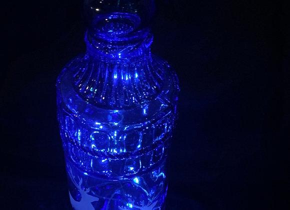 Custom Bottle Lights