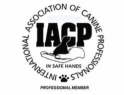 iacp logo.webp