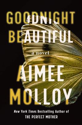 Brooke's Pick:  Goodnight Beautiful by Aimee Molloy
