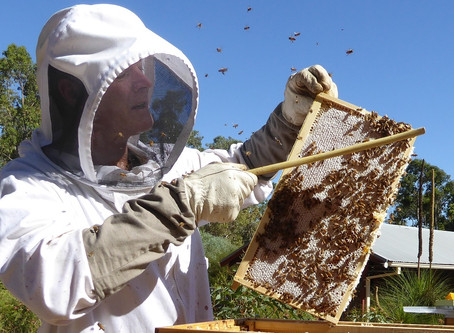 Are you a Certified Beekeeper