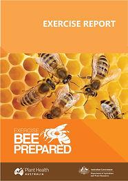 Exercise-Bee-Prepared-Report 25-7-2019 copy.jpg