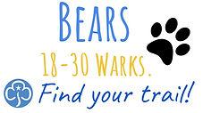 Bears...JPG