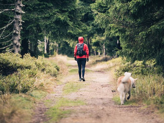 Hiking Can Make You Happier and Healthier