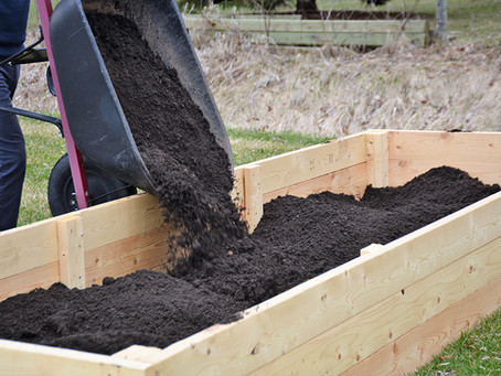 How To Prepare Raised Beds For Planting