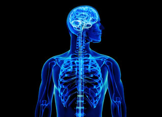 Can Physical Therapy Help a Spinal Cord Injury Patient?
