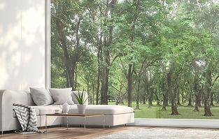 FX8p miljøbilde vindu mot skogen.jpg