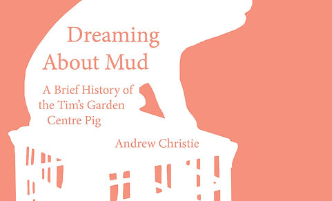 Dreaming About Mud Cover Jpeg5.jpg