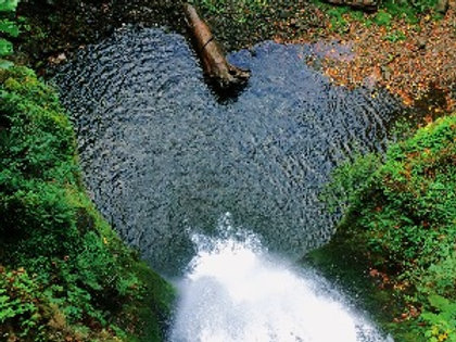 Healing the Heart Meditation