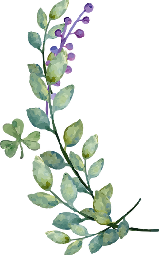 Watercolor-Leaves-PNG-Image.png