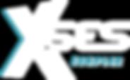 Logo_XSES_Complex_BLUE_LIGHT_2019_400px.
