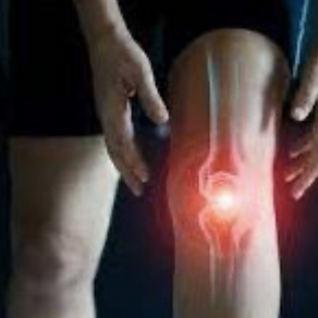 Muscles, Tendons, Ligaments and Joints - Mechanical Structures that can make or break performance!