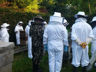 Spring New Beekeeper Course Starts