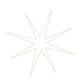 large-star.png