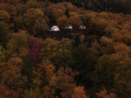 DÔMES (LUXURY) TO LIVE IN THE FOREST