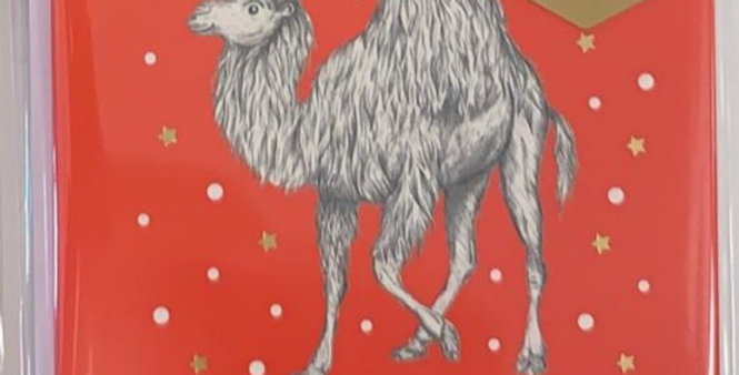 Faithful Camel Pack of 6 Cards
